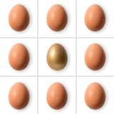 Group of eggs with gold egg. On white background Royalty Free Stock Images