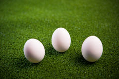 Group of eggs on the grass Royalty Free Stock Photo