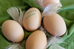 Group of eggs on green background Stock Photography