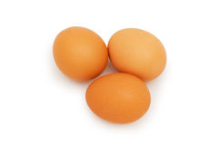 Group of eggs  isolated on the white. Group of eggs isolated on the white Royalty Free Stock Photography