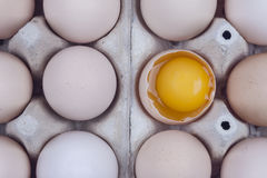 Group of eggs - one broken with yolk on the top. Stock Image