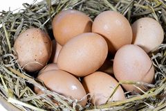 Group of eggs with straw. In a bamboo basket are prepared for cooking Royalty Free Stock Photography