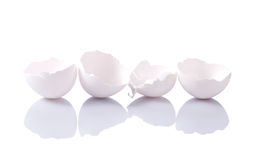 Group of eggshells Stock Image