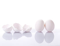 Group of eggshells and eggs Royalty Free Stock Photo
