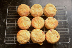 Group of English cheese scones cooling on wire rack Stock Photo