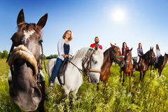 Group of equestrians riding their horses in field Stock Photo