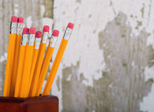 Group of eraser ends of pencils in pencil holder Royalty Free Stock Photo