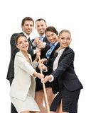 Group of executives pull the rope. Isolated on white. Concept of teamwork and promotion Stock Image