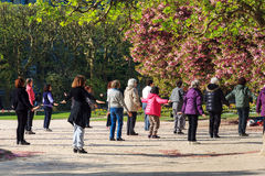 Group exercise in the park Stock Photography