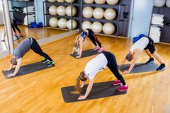 Group exercising body flexibility and balance at fitness gym stock image