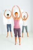 Group of exercising women Royalty Free Stock Images
