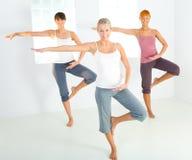 Group of exercising women Stock Photo