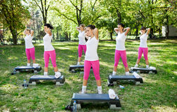 Group of exercising women Stock Image