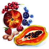 Group of exotic fruits. Watercolor painting on white background Stock Photo