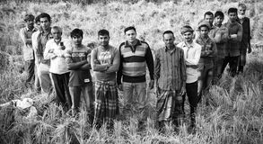 A group of farmers standing around an agricultural field. A group of Bangladeshi farmers standing together around an agricultural field unique editorial photo royalty free stock photos
