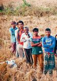Group of farmers standing around an agricultural field royalty free stock photos