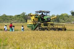 A grain harvester is moved into position to begin reaping a field of rice near Panama in Sri Lanka. A group of farmers watch as a mechanical harvester is moved Royalty Free Stock Image