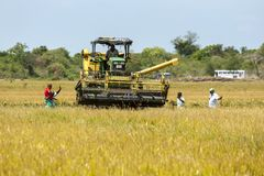 A grain harvester is moved into position to begin reaping a field of rice near Panama in Sri Lanka. A group of farmers watch as a mechanical harvester is moved Royalty Free Stock Photos