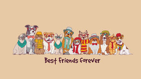 Group fashion best friends pets fun animals card. Stock Photos
