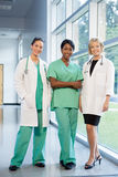 Group of female doctors and nurses Royalty Free Stock Image