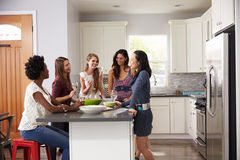 Group Of Female Friends Enjoying Pre Dinner Drinks At Home Stock Images