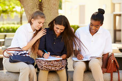 Group Of Female High School Students Working Outdoors Stock Photos