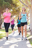 Group Of Female Runners Exercising On Suburban Street Stock Photo