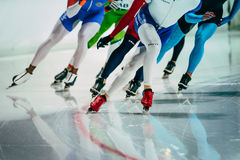 Group of female speed skaters warm up before starting Stock Images