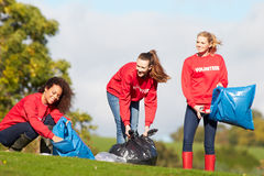 Group Of Female Volunteers Collecting Litter. In A Feild Royalty Free Stock Photos