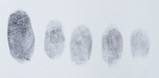 Group of finger prints. On white paper texture royalty free stock image