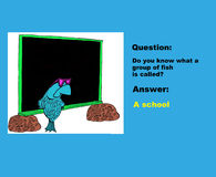Group of Fish. Education illustration showing a fish at a blackboard and the words, 'Question: do you know what a group of fish is called?  Answer: A school Royalty Free Stock Images