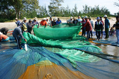 Group of fisherman pull fish net Stock Photography