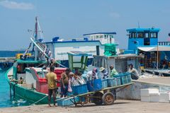 Group of fishermen at the harbor loading fish in the baskets stock photography