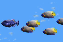 Group of fishes Royalty Free Stock Photo