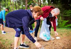 Group of fit people picking up litter in nature, a plogging concept. A roup of fit young people picking up litter in nature, a plogging concept stock photography