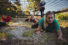 Group of fit women crawling under the net during obstacle course training Royalty Free Stock Image