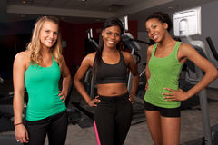 Group of fitness friends Royalty Free Stock Image