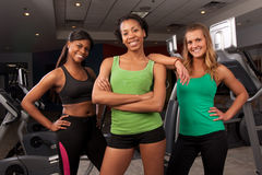Group of fitness friends Royalty Free Stock Photo