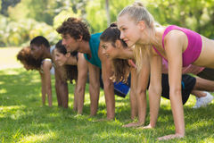 Group of fitness people doing push ups in park Stock Image