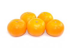 Group Five Oranges On White Background Royalty Free Stock Image