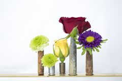 Group of Five Rusted Bullet Casings Holding Flowers on White Background royalty free stock photography