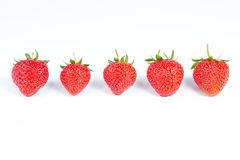 Group of five strawberries isolated on white. Group ripe and juicy strawberries isolated on white background Stock Photo