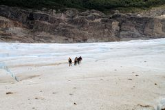Patagonia Glacier Hikers Stock Images
