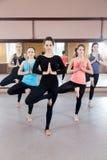 Group of five yogi females doing Yoga practice royalty free stock photography