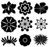 Group of floral templates Royalty Free Stock Photo