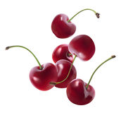 Group of flying cherries isolated on white background Royalty Free Stock Images