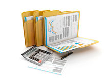Group folders with documents. 3d illustration: Business idea. The group folders with documents and a calculator. accounts Stock Images
