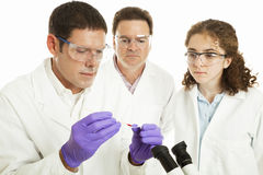 Group of Forensic Scientists Stock Photo