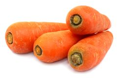 Fresh Carrots isolated Royalty Free Stock Photography