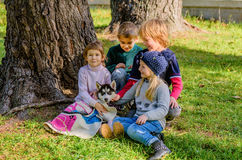 Group of four kids playing with husky puppy in the park Royalty Free Stock Image